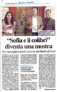 Progetto Sofia Carlino 20_03_2014